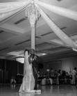 Hague Wedding Reception Stranahan Toledo 2015-08-29 729