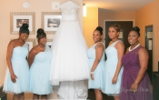 Brides Dress and Bridesmaids