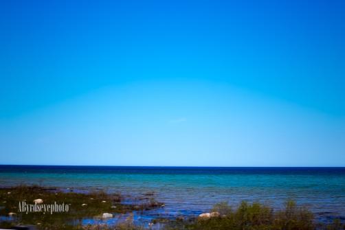 gistwedding-castle-farms-charlevoix-beach