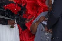 Toledo Intimate Wedding Reynolds Reception Hall_-35