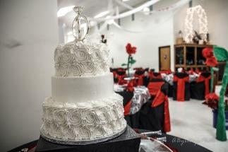 Toledo Intimate Wedding Reynolds Reception Hall_-57