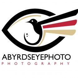 AByrdseyePhoto  Photography